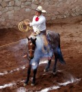 Charro mexicano