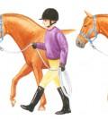 Practique llevando al caballo de la cuerda con usted a la altura de su hombro, en la zona de la cruz y cerca de su cabeza. Si puede conducirle en todas esas posiciones, sepa que él escucha y acepta sus directrices.