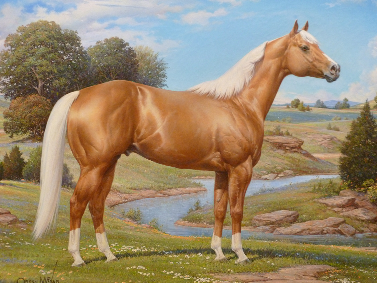 Red Painted Horse Hames