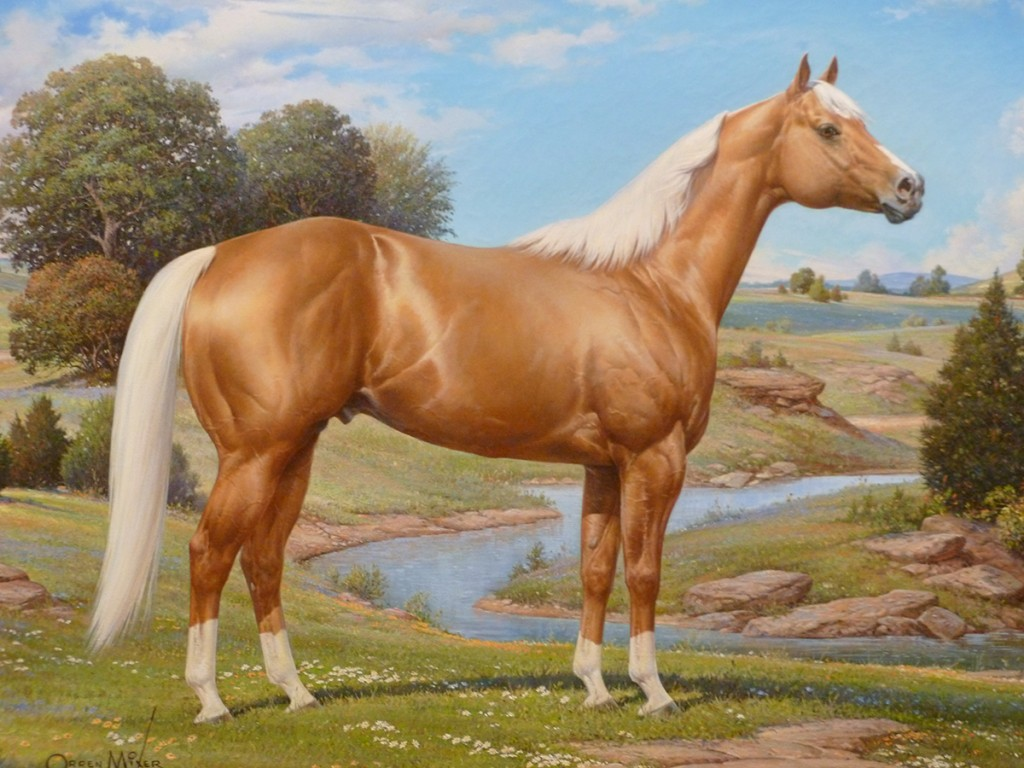 caballo-palomino-web